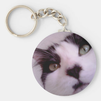 Chester the cat close up basic round button key ring