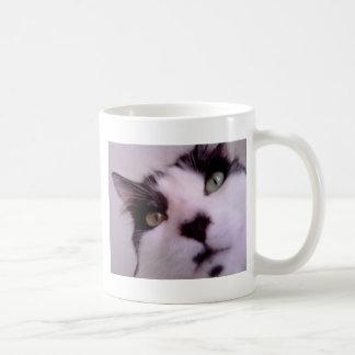 Chester the cat close up basic white mug