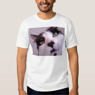 Chester the cat close up shirts