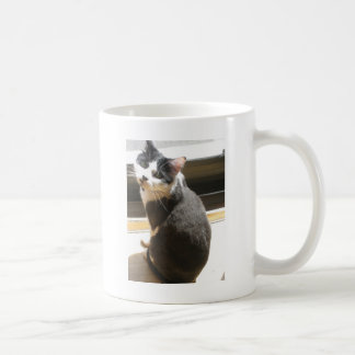 Chester the cat_sitting at the door basic white mug
