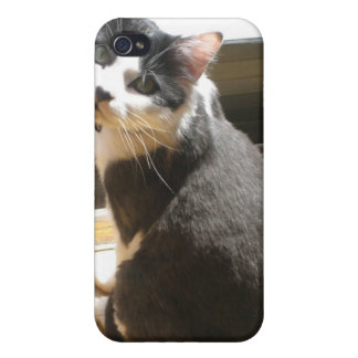 Chester the cat_sitting at the door iPhone 4 case