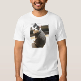 Chester the cat_sitting at the door t-shirts