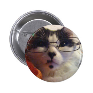 Chester the cat wearing glasses 6 cm round badge