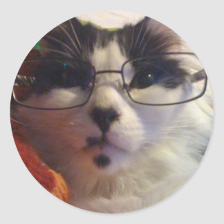 Chester the cat wearing glasses round sticker