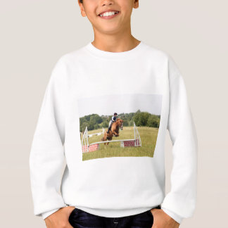 Chestnut2 Sweatshirt