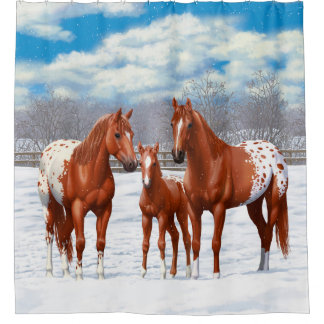 Chestnut Appaloosa Horses In Snow Shower Curtain