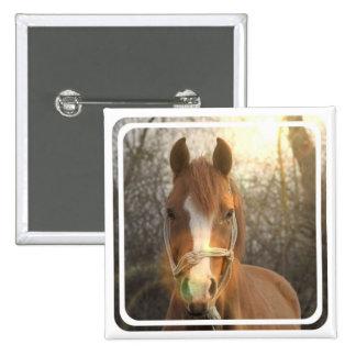 Chestnut Arab Horse Square Pin