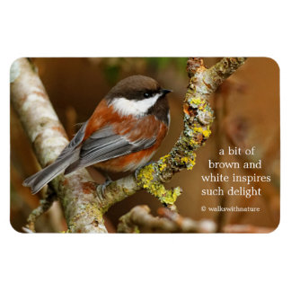 Chestnut-Backed Chickadee on the Cherry Tree Rectangular Photo Magnet