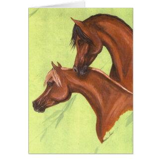 Chestnut & Bay Arabians Card