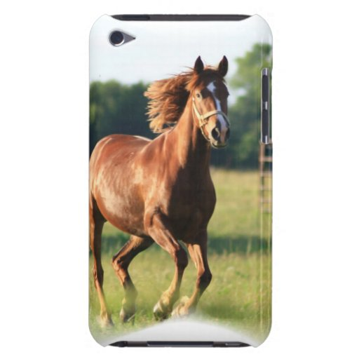 Chestnut Galloping Horse iTouch Case iPod Case-Mate Cases