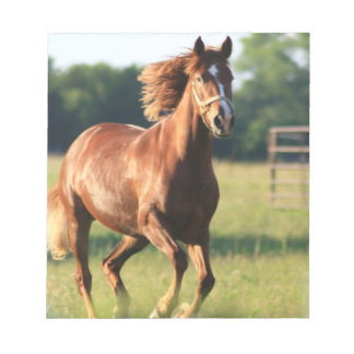 Chestnut Galloping Horse Notepad