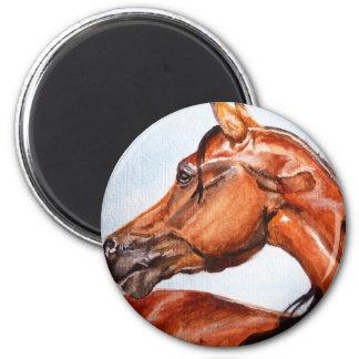 Chestnut horse 6 cm round magnet