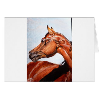 Chestnut horse card