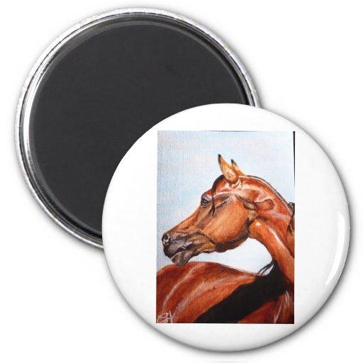 Chestnut horse fridge magnets