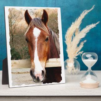CHESTNUT HORSE PLAQUE