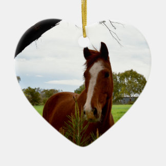 Chestnut Horse Sniffing A Banksia Tree, Christmas Ornament