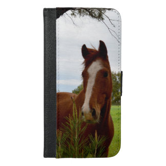 Chestnut Horse Sniffing A Banksia Tree, iPhone 6/6s Plus Wallet Case