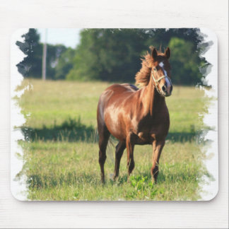 Chestnut Horse Standing Mouse Pad