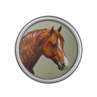 Chestnut Morgan Horse Speaker
