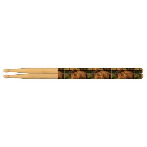 Chestnut Pony Drumsticks