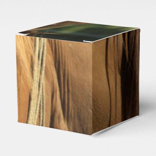 Chestnut Pony Wedding Favor Boxes