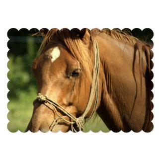 Chestnut Pony 5x7 Paper Invitation Card