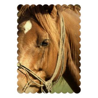 Chestnut Pony Custom Announcements