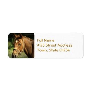 Chestnut Pony Mailing Label Return Address Label