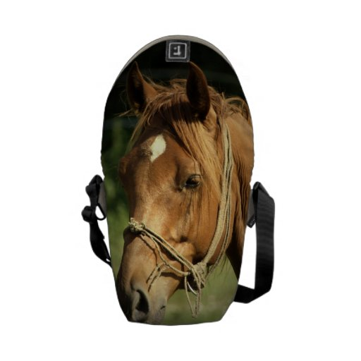 Chestnut Pony Courier Bags