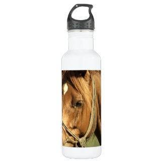 Chestnut Pony 24oz Water Bottle