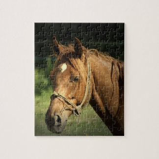 Chestnut Pony Puzzle