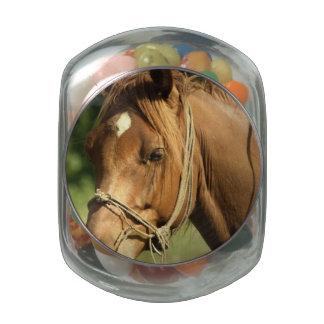 Chestnut Pony Glass Candy Jars