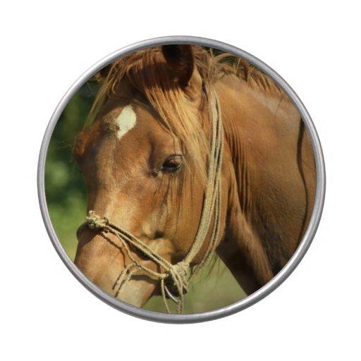 Chestnut Pony Candy Tins