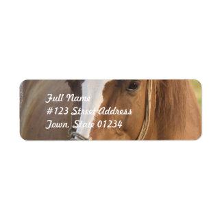 Chestnut Quarter Horse Mailing Labels