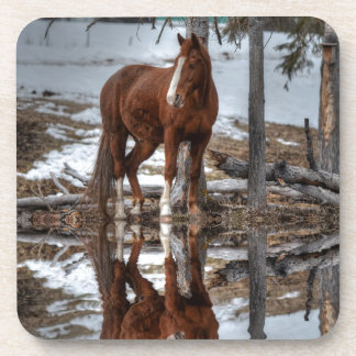 Chestnut Ranch Horse and Pond Reflection Drink Coaster