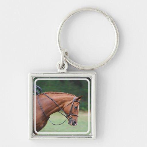Chestnut Show Horse Keychain