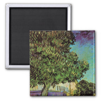 Chestnut Tree in Blossom Square Magnet