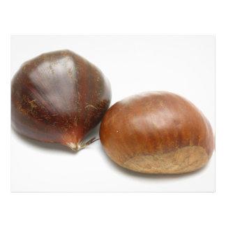 Chestnuts 21.5 Cm X 28 Cm Flyer