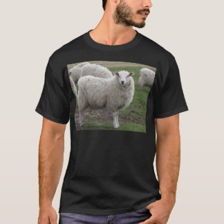Cheviot sheep T-Shirt