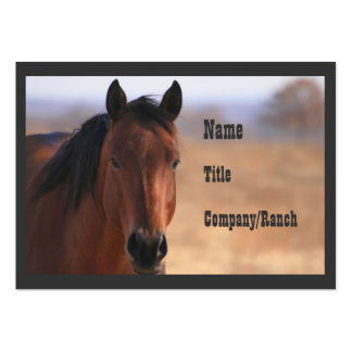 Cheyenne, Western Business Pack Of Chubby Business Cards