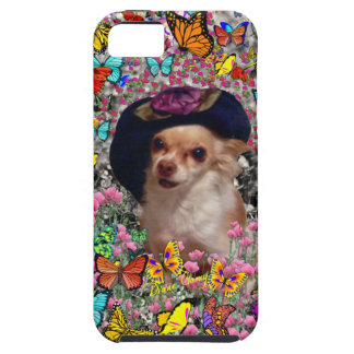Chi Chi in Butterflies  - Chihuahua Puppy in Hat Case For The iPhone 5