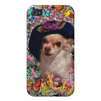 Chi Chi in Butterflies - Chihuahua Puppy in Hat Cases For iPhone 4