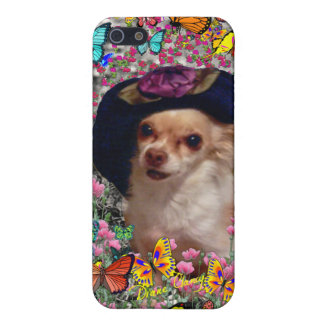 Chi Chi in Butterflies - Chihuahua Puppy in Hat Cover For iPhone 5/5S