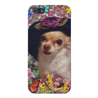 Chi Chi in Butterflies - Chihuahua Puppy in Hat iPhone 5/5S Cover