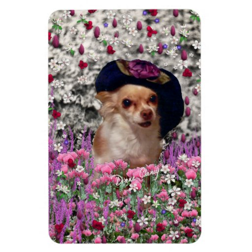 Chi Chi in Flowers  - Chihuahua Puppy in Cute Hat Rectangle Magnets