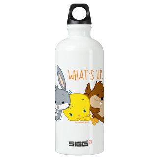 Chibi BUGS BUNNY™, TWEETY™, & TAZ™ Water Bottle