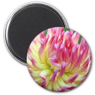 Chic 6 Cm Round Magnet