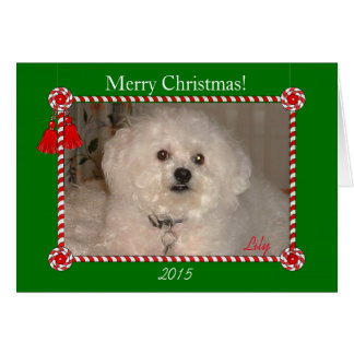 CHIC CHRISTMAS CARD_RED TASSES/PHOTO GREETING CARD