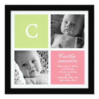 Chic Frame Baby Girl Birth Announcement Invites