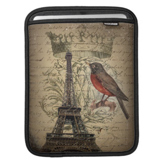 Chic French Bird Modern Vintage Paris Eiffel tower iPad Sleeve